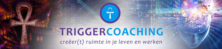 Header Triggercoaching